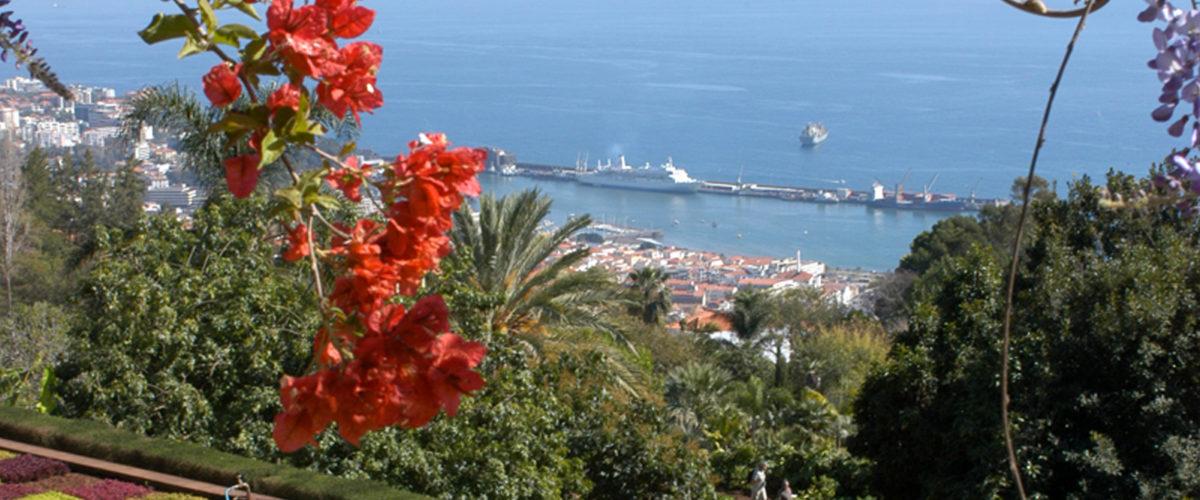 Jardim_Botanico_© New Travel